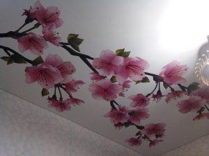 stretch-ceiling-07