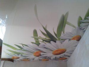 stretch-ceiling-08