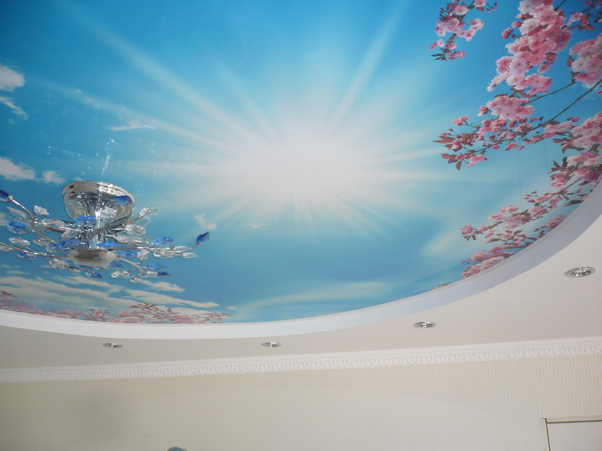 натяжные потолки с фотопечатью в г. Шахты